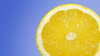 lemon-lemons-fruit-citrus-fruit-medium